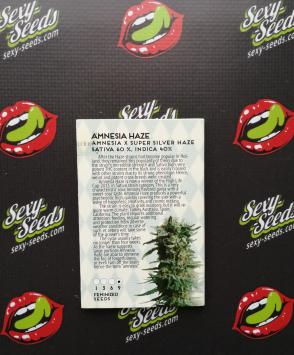 Amnesia Haze семена марихуаны