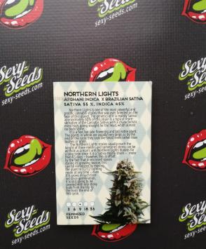 Northern Lights Amsterdam Seeds