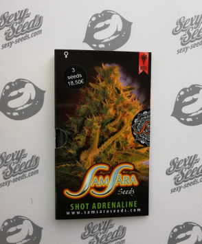 Shot Adrenaline Samsara Seeds)
