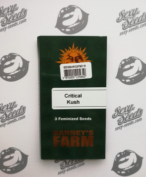 Critical Kush Barney's Farm