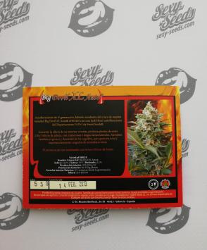 Big Devil XL Auto семена марихуаны