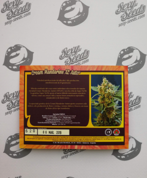 Sweet Seeds Cream Mandarine XL Auto
