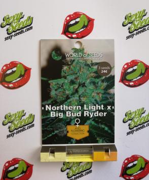 семена конопли Northern Light X Big Bud Auto World Of Seeds
